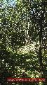 863 Pozemok na rodinný dom v rekreačnej oblasti Drienica