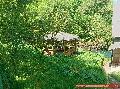862 Murovaná chata v Sokoli